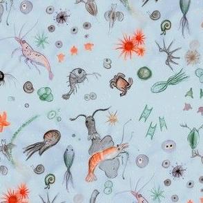 Micro sea life