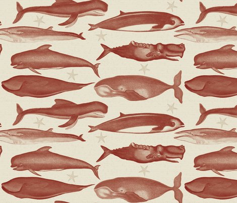 Rrrwhales_burgundy_shop_preview