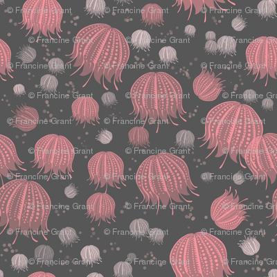 Jelly field