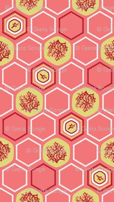 Hexagon Coral
