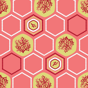 Hexagon Coral