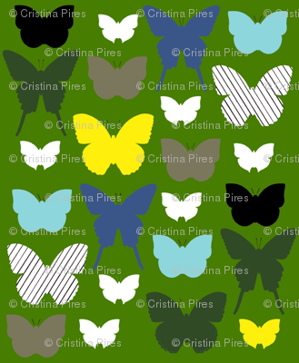 butterfly1_17jan2012gGREENYELLOW