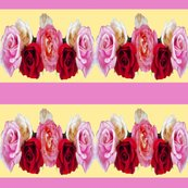 Rrrrrr620154_rr-grandmasroseribbon2-changed3_shop_thumb
