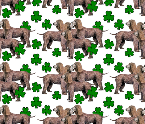 Irish_Water_Spaniels_with_shamrocks fabric by dogdaze_ on Spoonflower - custom fabric