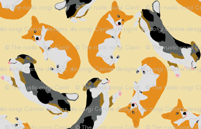 Welsh Corgi Ditzy Derp - tan