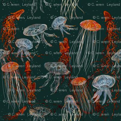 Deep Sea Jellyfish 2250