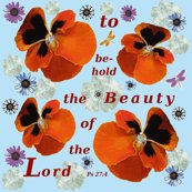 Rrbeauty_of_the_lord_shop_thumb