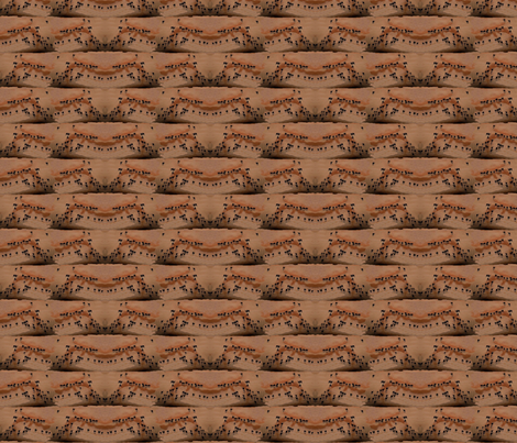 Tiny Camels Crossing Vast Desert fabric by robin_rice on Spoonflower - custom fabric