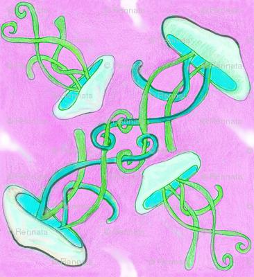 RMT-Jellyfish