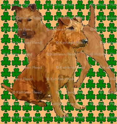 irish_terriers_with_shamrocks