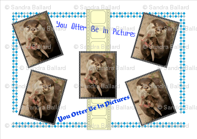 You Otter Be In Pictures!
