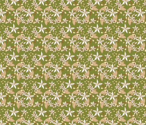 Coffee Arabica Green fabric by mysteek on Spoonflower - custom fabric