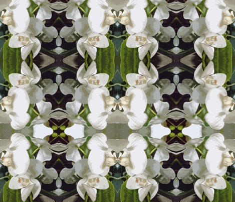 White Orchids fabric by susaninparis on Spoonflower - custom fabric