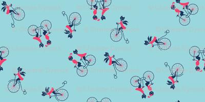 Kitties on Bicycles