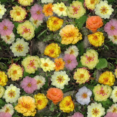 Moss Roses fabric by eclectic_house on Spoonflower - custom fabric