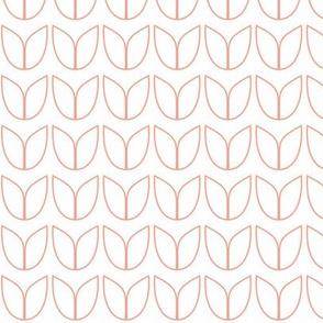 gilhoolie tulip in peachy pink