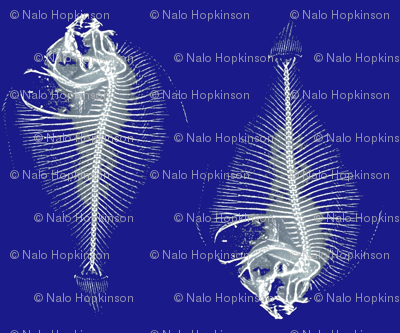 fishbone repeat; blue