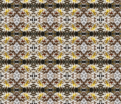 butterfly case fabric by codalion on Spoonflower - custom fabric