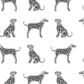 Rrrdalmatians_-_black_shop_thumb