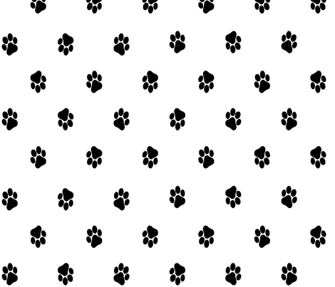 Paws - black fabric by pininkie on Spoonflower - custom fabric