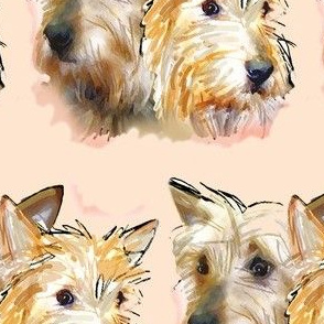 Australian Terriers Watercolor Portrait