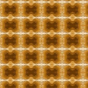Mud Pattern