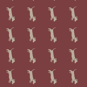 doxie_run-burgundy
