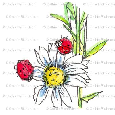 Ladybug Daisy
