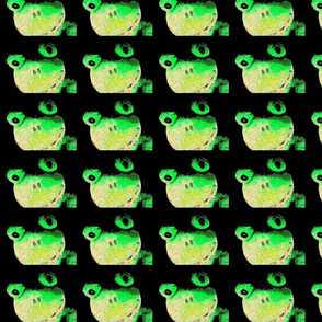 Frogs Galore-ch