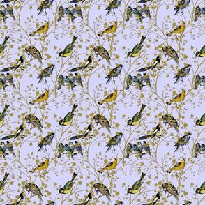Georgian Birds on blue