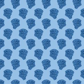 Wire-haired Dachshund sketch - blue