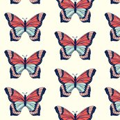 Rrbutterfly_50_percent_shop_thumb