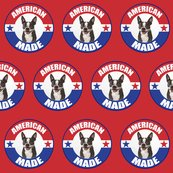 Rramerican_made_boston_terrier_shop_thumb