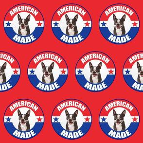 American_Made_Boston_terrier