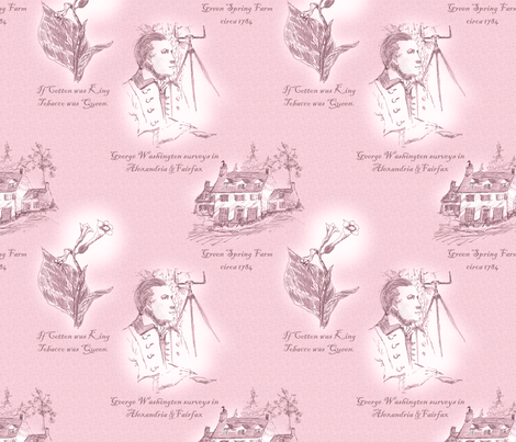 Annandale, Virginia - Old Rose fabric by glimmericks on Spoonflower - custom fabric