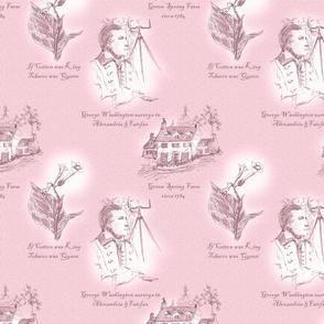Annandale, Virginia - Old Rose