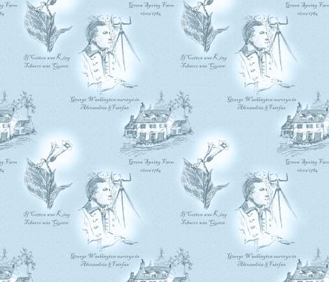 Annandale. Virginia - Blue Sky Above fabric by glimmericks on Spoonflower - custom fabric