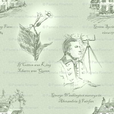 Annandale, Virginia - Plantation Mint