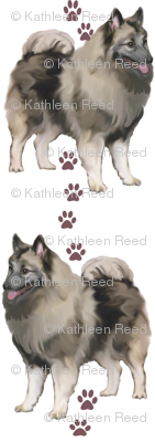 keeshonden and paw prints