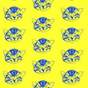kitty small blue yellow