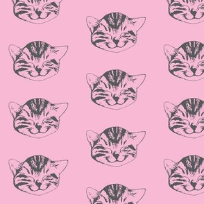 kitty small pink