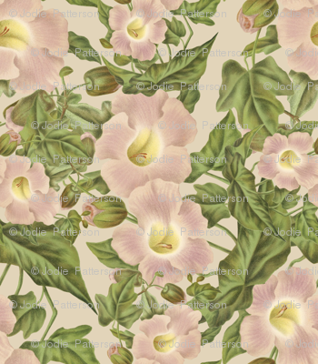 Shabby Chic vintage floral