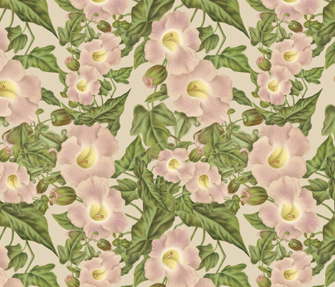 Shabby Chic vintage floral fabric by jodielee on Spoonflower - custom fabric