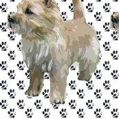 Rrr1019553_rrrrcaairn_terrier_pawprints_shop_thumb