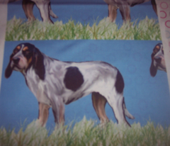 Rrrrbluetick_coonhoundnew_comment_152591_preview