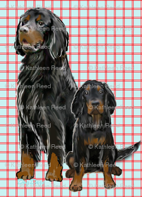 Gordon setter Mom and Pup