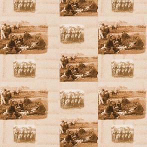 Arizona Rough Riders