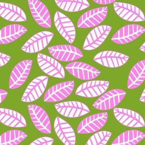 feuille rose fond vert