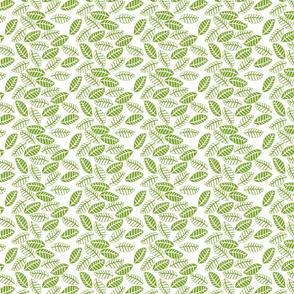 feuille vert fond blanc S