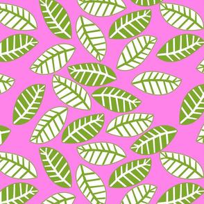 feuille vert fond rose
